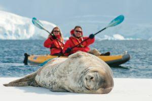 Антарктида, туризм
