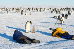 Отдых в Антарктиде