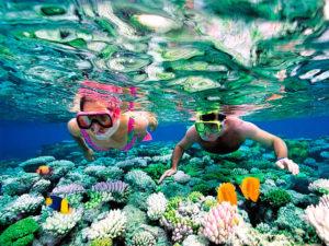 Активный отдых (серфинг, дайвинг)