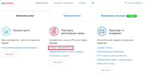 "Функция ""Паспорт гражданина РФ"""