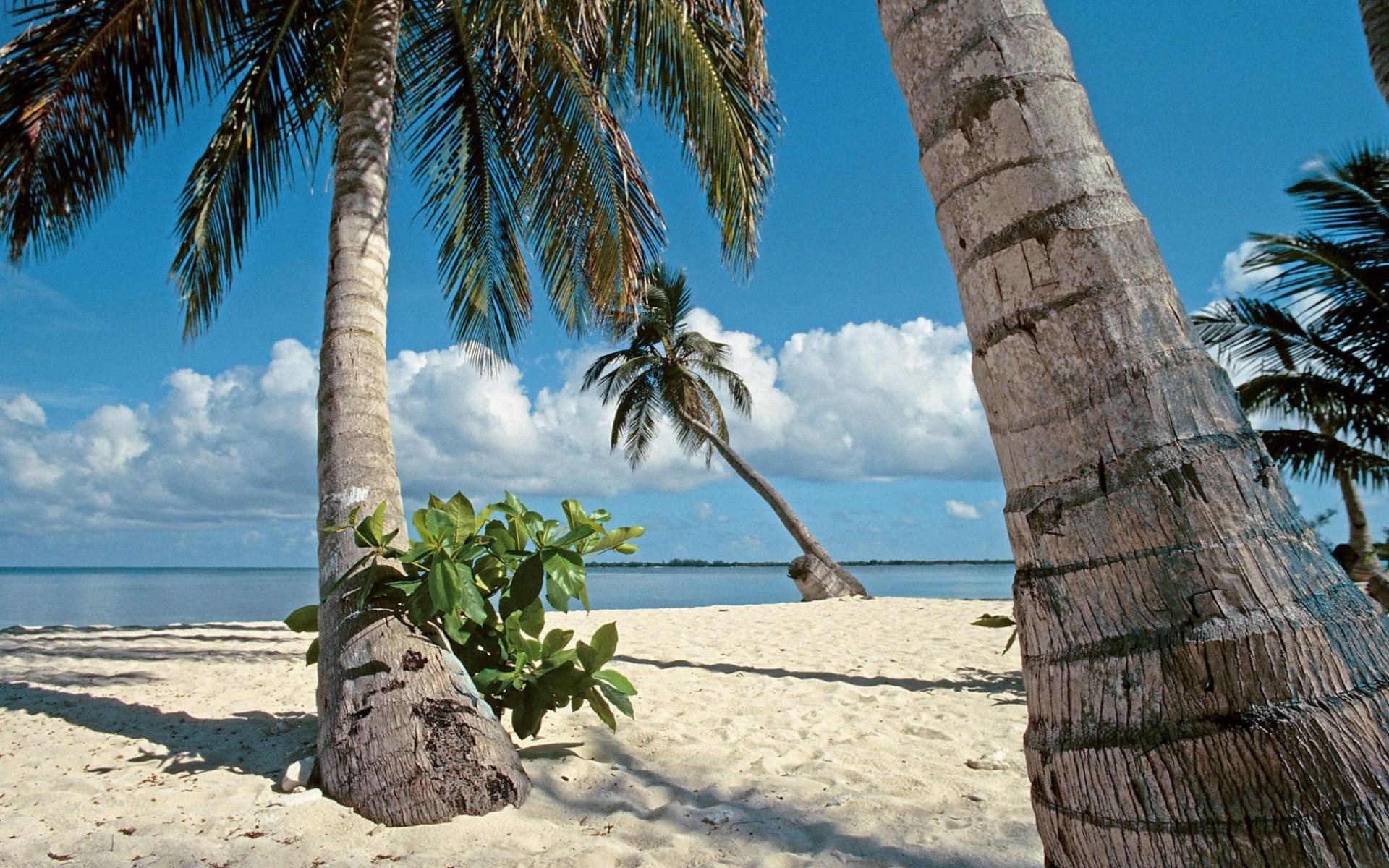 Гондурас, пляж