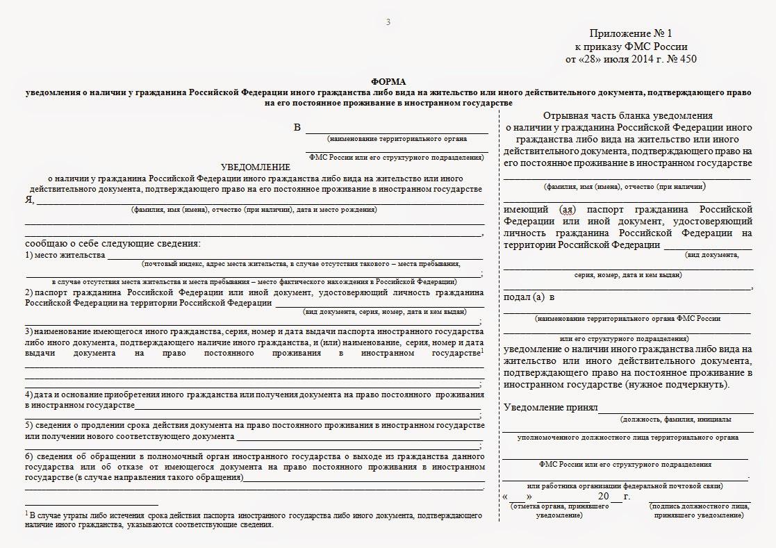 Образец заявления о наличии гражданства