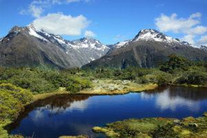 Природа в Новой Зеландии