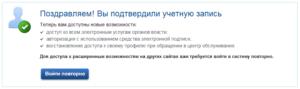Теперь вам доступен весь функционал сайта Gosuslugi.ru