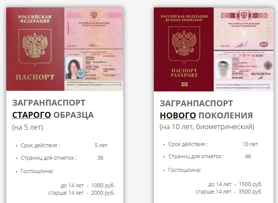 Виды загранпаспорта гражданина РФ