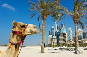 Объединенные Арабские Эмираты (ОАЭ) - это богатая развивающаяся страна