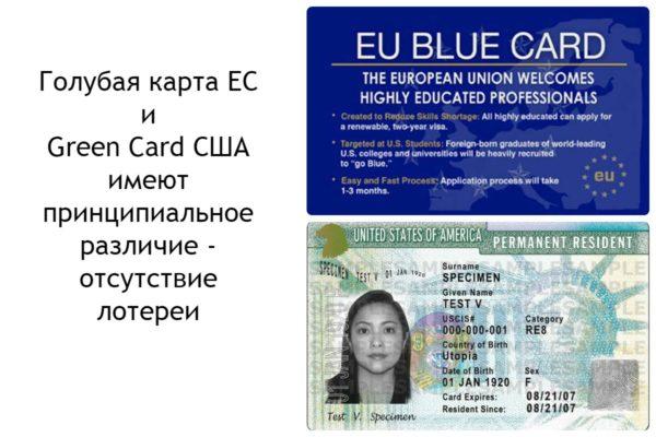 Отличия Голубой карты ЕС и Грин кард США