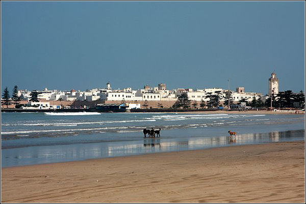Пляж Эс Сувейра (Essaouira), Марокко
