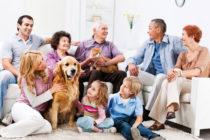Семейная (в рамках гостевого визита)
