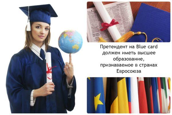 Требования к претенденту на Blue Card EU