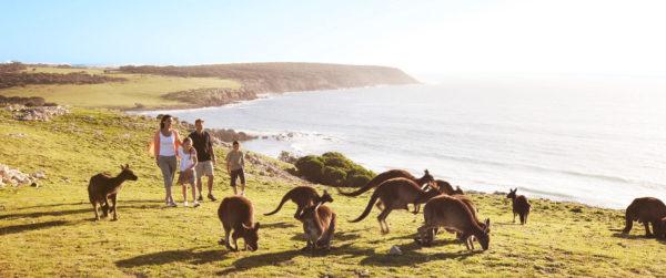 Если хотя бы у одного из родителей есть гражданство Австралии, дети автоматически становятся гражданами страны кенгуру