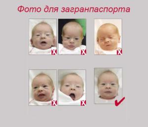 Каким должно быть фото на загранпаспорт для новорожденного