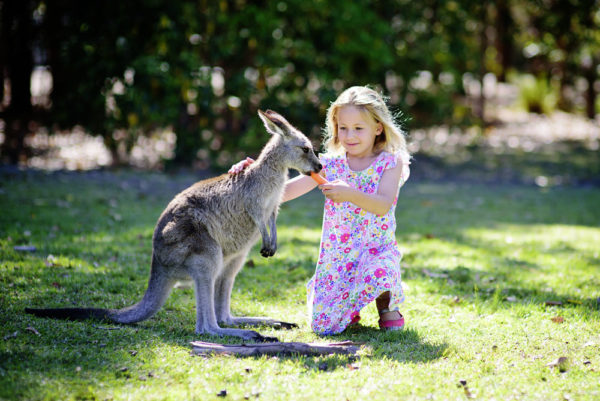 В среднем требуется четыре года, чтобы усыновить/удочерить ребенка в приемную семью