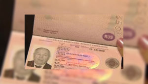 На паспортах видны голограммы