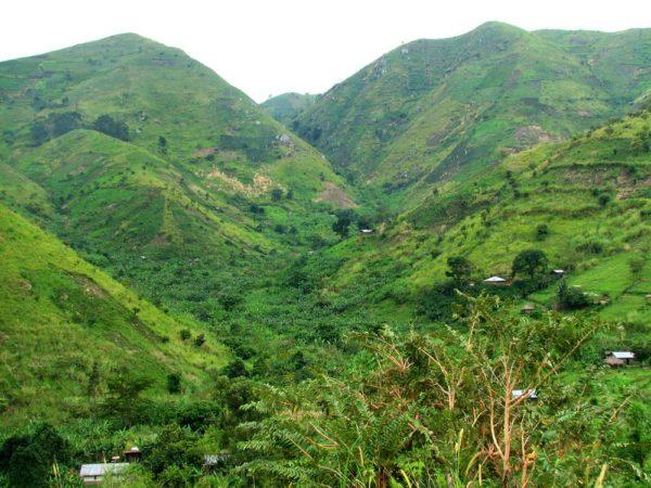 Национальный парк «Горы Рувензори», Уганда, Африка