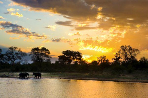 Озеро Чад в Африке