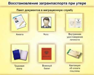 Пакет документов миграционную службу