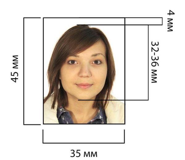 Размеры фото на шенгенскую визу