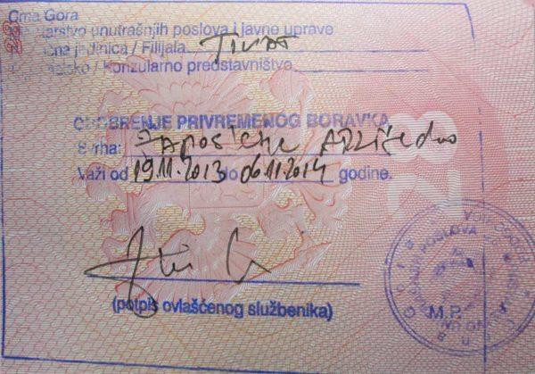 Виды виз в Черногорию