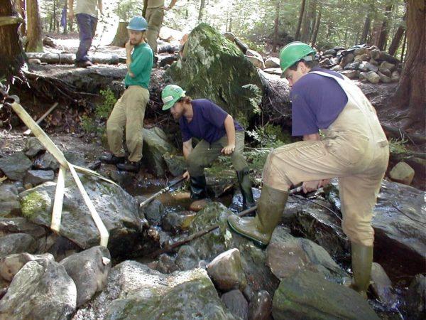 Волонтеры программы Помощники Аппалачей расчищают ручей