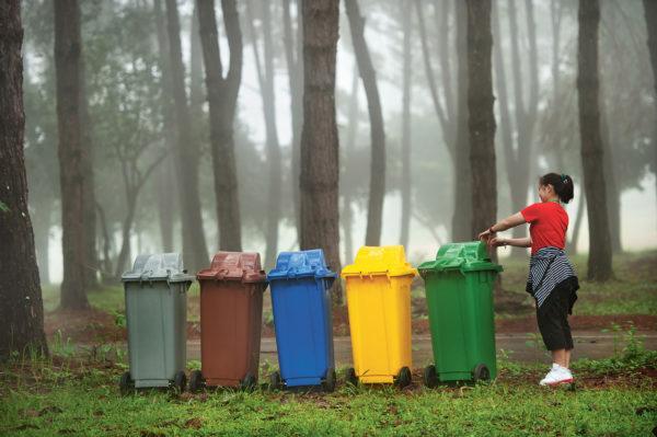 Даже в лесах установлены баки для всех видов мусора
