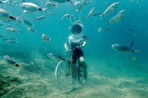 Хорватия. Дайвинг в подводном парке в Пуле