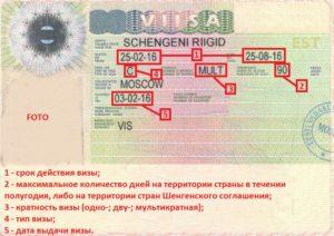 Информация на визах