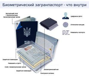 Из чего состоит биометрический загранпаспорт