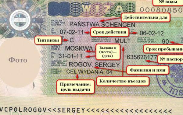 Как читать визу