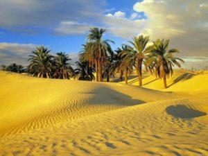 Климат в Тунисе