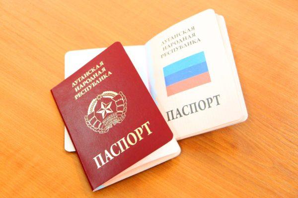 Обложка паспорта красная