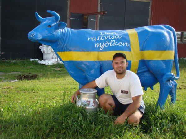 Работа в Швеции
