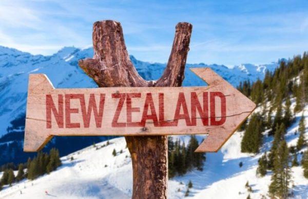 Самым популярным способом иммиграции в Новую Зеландию является иммиграция специалистов, профессионалов своего дела, которых не хватает в маленькой, но очень гордой стране