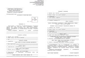 Заявление о приеме в гражданство Российской Федерации ребенка
