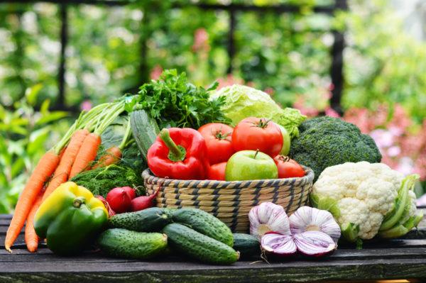 Норвегия активно занимается экспортом овощей