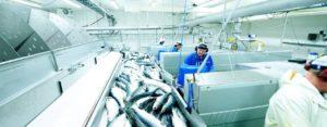 Норвежское оборудование - высокотехнологичное и соответствует всем требованиям безопасности