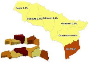 Процентный показатель грузинского населения на территории Абхазии