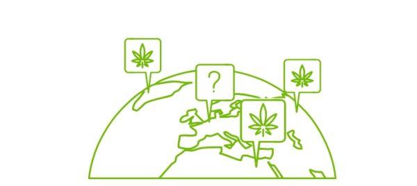 В каких странах легализована марихуана