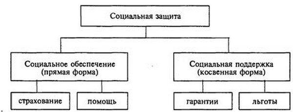 Структура и формы социальной защиты населения