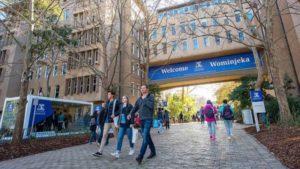 University of Melbourne предлагает лучшее образование в области гуманитарных наук