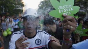 Уругвай легализовал продажу и производство марихуаны в 2013 году