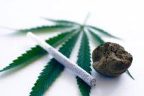 В Австрии врач может выписать марихуану для лечения