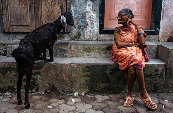 В Индии каждый штат самостоятельно устанавливает размер пенсии