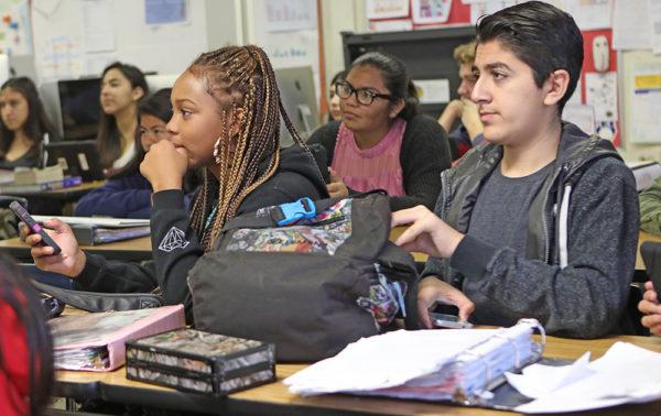 В дополнение школьник может выбрать себе факультатив или кружок