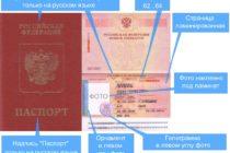 Загранпаспорт на 10 лет: как подать заявление