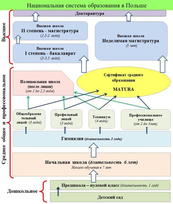 Национальная система образования в Польше