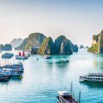 Вьетнам/до 2 недель