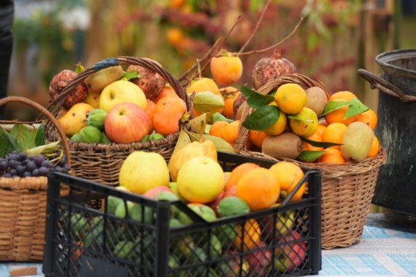 Владельцы частных домов часто угощают домашними фруктами