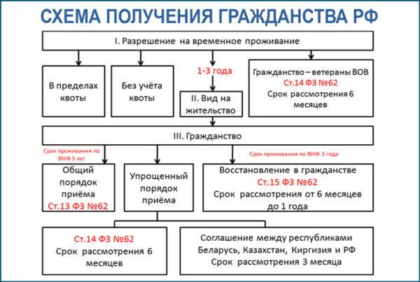 Схема получения гражданства РФ