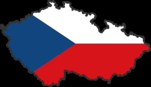 Все документы нужно перевести на чешский язык